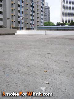Cigarette butt found on the ground of block 4 Tanjong Pagar Plaza Singapore